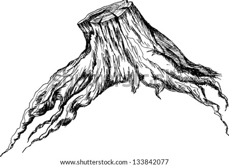 Tree Log Drawing The Stump Stock Vector