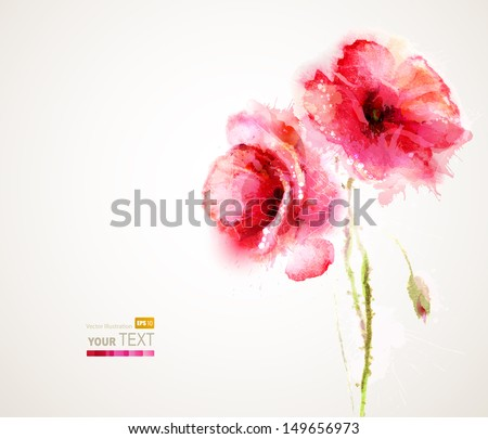 The two flowering red poppies. Greeting-card. - stock vector