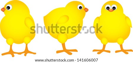 three chicks on the white background - stock vector
