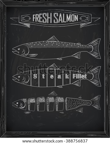 three fresh salmon from the scheme drawing in the chalk - stock vector