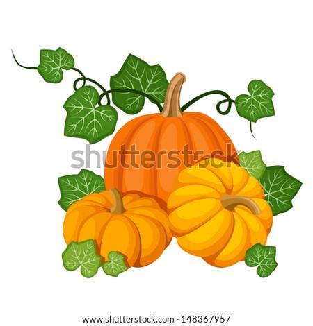Three orange pumpkins. Vector illustration. - stock vector