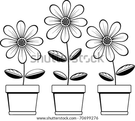three pots with three daisies - stock vector