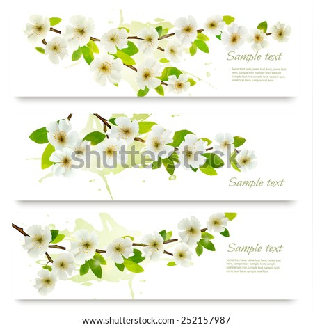 Three spring banners with blossoming tree brunch with spring flowers. Vector illustration - stock vector