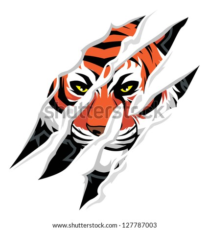 Tiger scratch tattoo designs - Tiger Paw Scratch Tiger Claw Mark Stock Vector