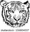 Tiger Face, Vector - stock vector
