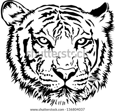 Tiger Face Stock Photos, Images, & Pictures | Shutterstock