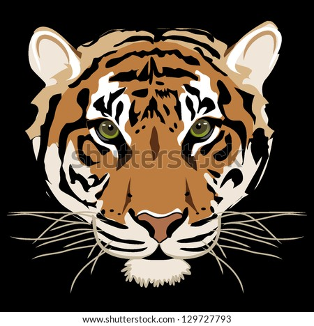 Tiger isolated on black background vector - stock vector
