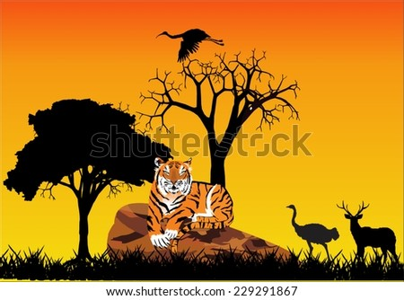 Tiger lying on stone and silhouettes of animals  - stock vector