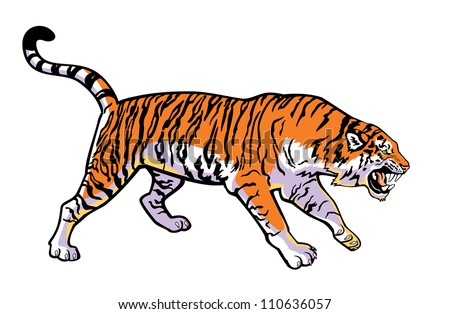 tiger vector, big cat,wild Africa animal, horizontal image isolated on white background ,side view single picture - stock vector