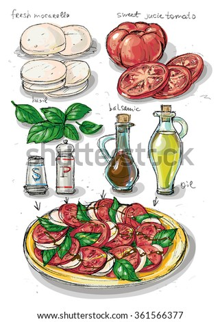 Tomato and Cheese. Instructions of preparation of traditional Italian cuisine dish - Caprese - tomato, mozzarella, basil. Appetizer, diet, vegeterian homemade food. - stock vector