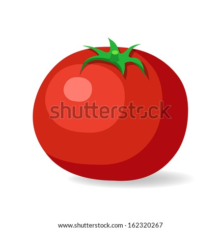 tomato isolated on white background - stock vector