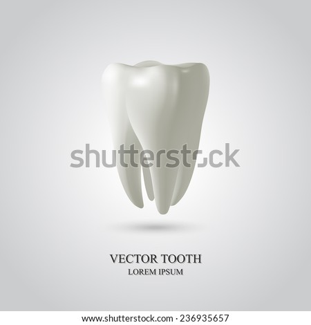 Tooth isolated on white background. 3D render. Dental, medicine, health concept. - stock vector