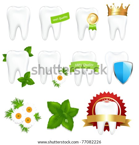 Tooths Set, Isolated On White Background, Vector Illustration - stock vector