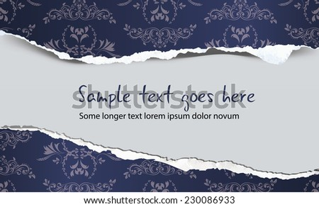 Torn paper with decoration and copy text, illustration - stock vector