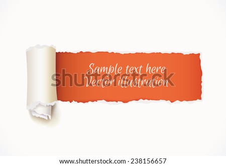 Torn Paper with space for text. Vector illustration. Isolated on white background - stock vector