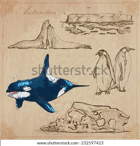 Travel: ANTARCTICA (set no.1)  - Collection of an hand drawn vector illustrations. Each drawing comprise three layers of lines, the colored background is isolated. Editable in layers and groups. - stock vector