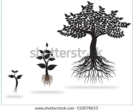 tree 0221 - stock vector