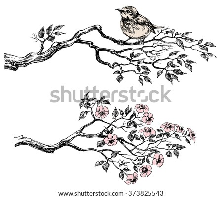 Tree branch with leaves and flowers - stock vector