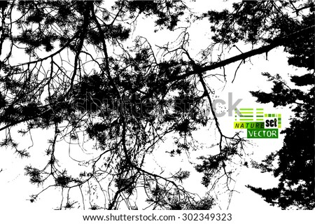 Tree branches in the forest tracing - stock vector