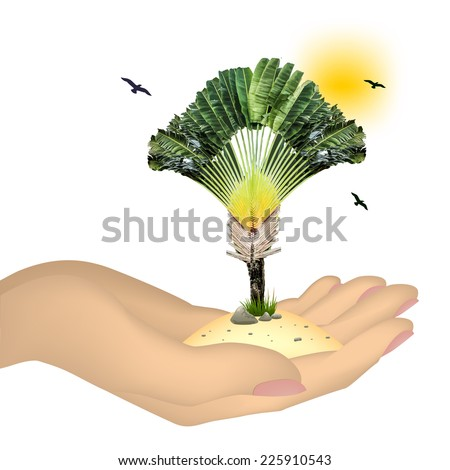 Tree in hand isolated on white background - stock vector