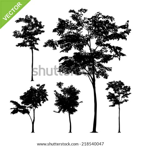 Tree silhouettes vector - stock vector