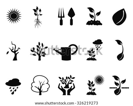 tree sprout growing icons set - stock vector