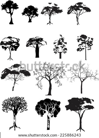 Trees collection isolated on white - stock vector