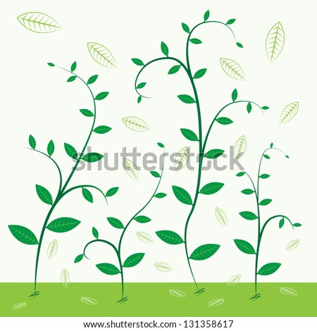 Trees growing in both small and large - stock vector