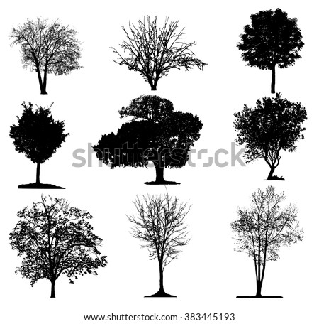 Trees silhouette collection - stock vector