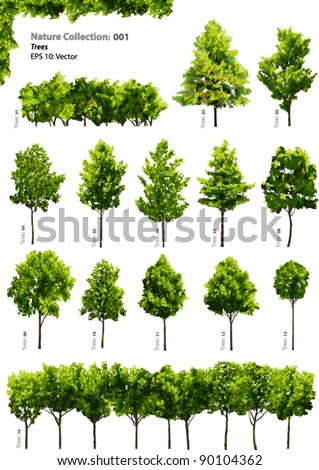 Trees - Vector Nature collection - 001 A selection of vibrant trees and bushes - stock vector