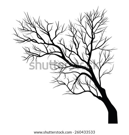 Trees with dead branch - stock vector