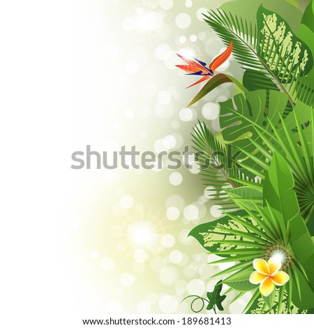 Tropical background with flowers and plants  - stock vector