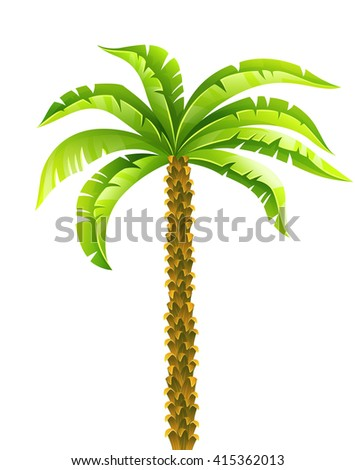 Tropical coconut palm tree with green leaves vector illustration. Isolated on white background. Coconut palm tree. Tropical palm. Palm tree. Palm vector. Palm tree isolated. Palm tree vector icon Palm - stock vector