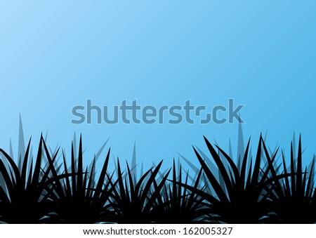 Cartoon Jungle Grass Tropical exotic jungle grass