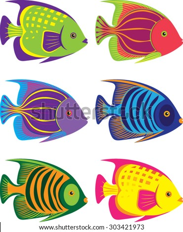 Tropical Fish - Illustration - Vector Art  - stock vector
