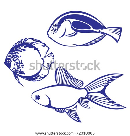 Tropical Fish. Set #4. Vector illustration on white background for design - stock vector