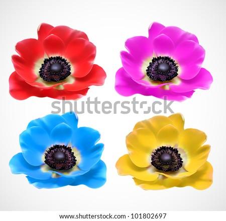 tropical fresh flower design - stock vector