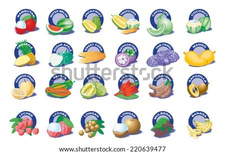 Tropical Fruit - stock vector