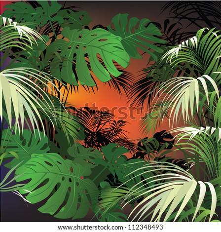 tropical landscape (tropical plants vector illustration) - stock vector