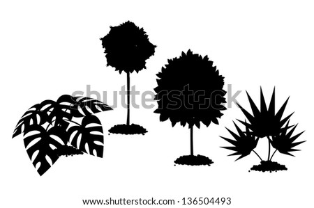Tropical landscaping plants silhouette. EPS 10 vector, grouped for easy editing. No open shapes or paths. - stock vector