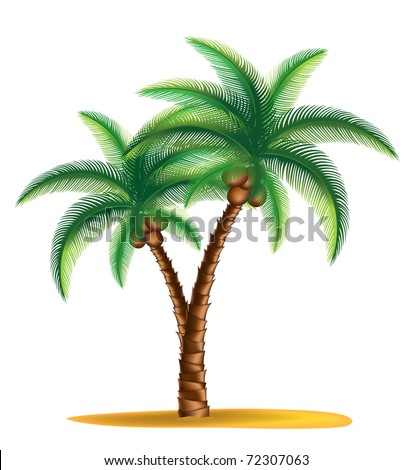 tropical palm tree standing on a small island vector - stock vector
