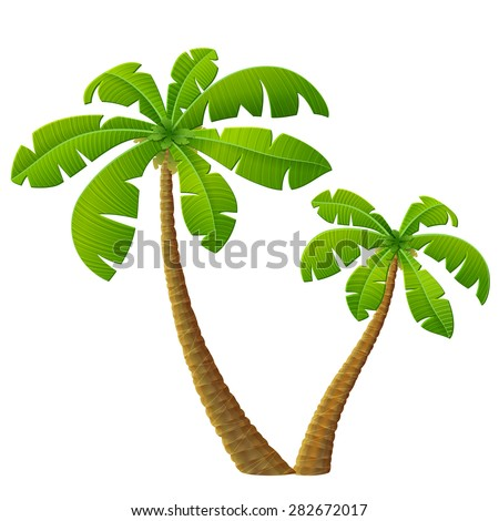 Tropical palm tree with leaves. Group of beach plants. Qualitative vector illustration for travel concept, southern nature, resort, tropical flora, beach, etc - stock vector