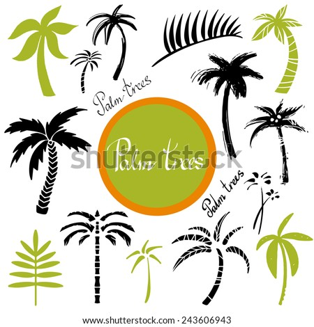Tropical palm trees and leaves cartoon hand drawn illustrations set isolated on a white background, art logo design  - stock vector