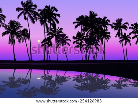 Tropical seashore with palms in the night with moonlight and clear sky. Vector illustration - stock vector