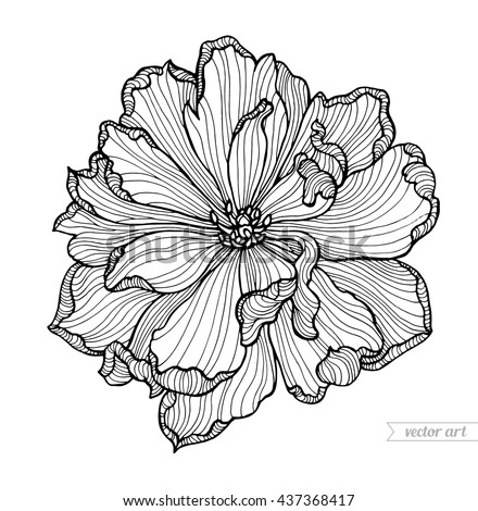 Tulip flower top view, line pattern. Vector artwork. Coloring book page for adult. - stock vector