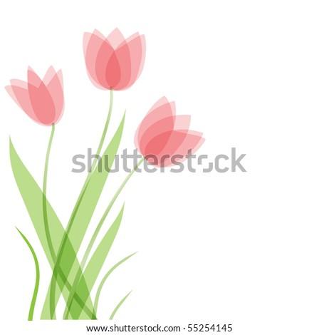 Tulip flowers. Vector background - stock vector
