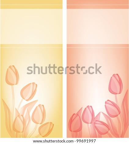 Tulips gentle background . eps 10 files - stock vector