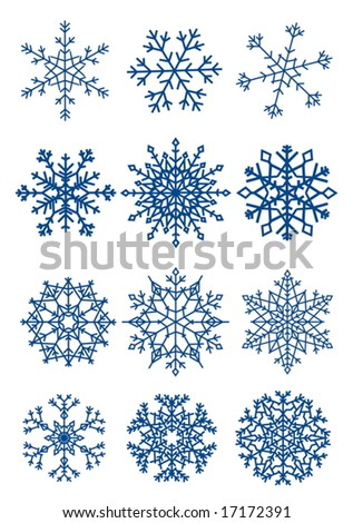Twelve beautiful different snowflakes isolated on white - vector - stock vector