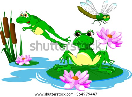 Two green frog swimming in a blue pond, vector - stock vector