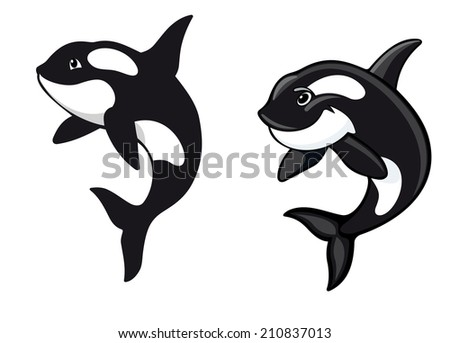 Two killer whales in cartoon style for wildlife design - stock vector